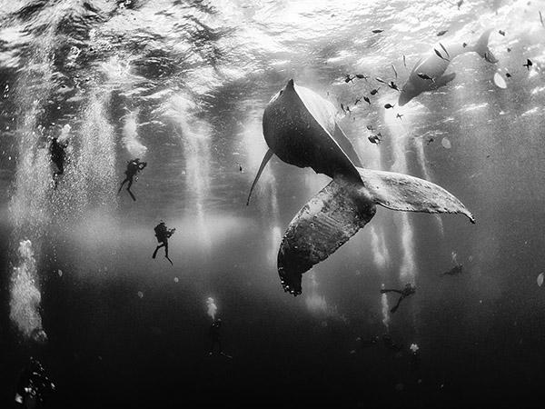 National Geographic Traveler Photo 2015