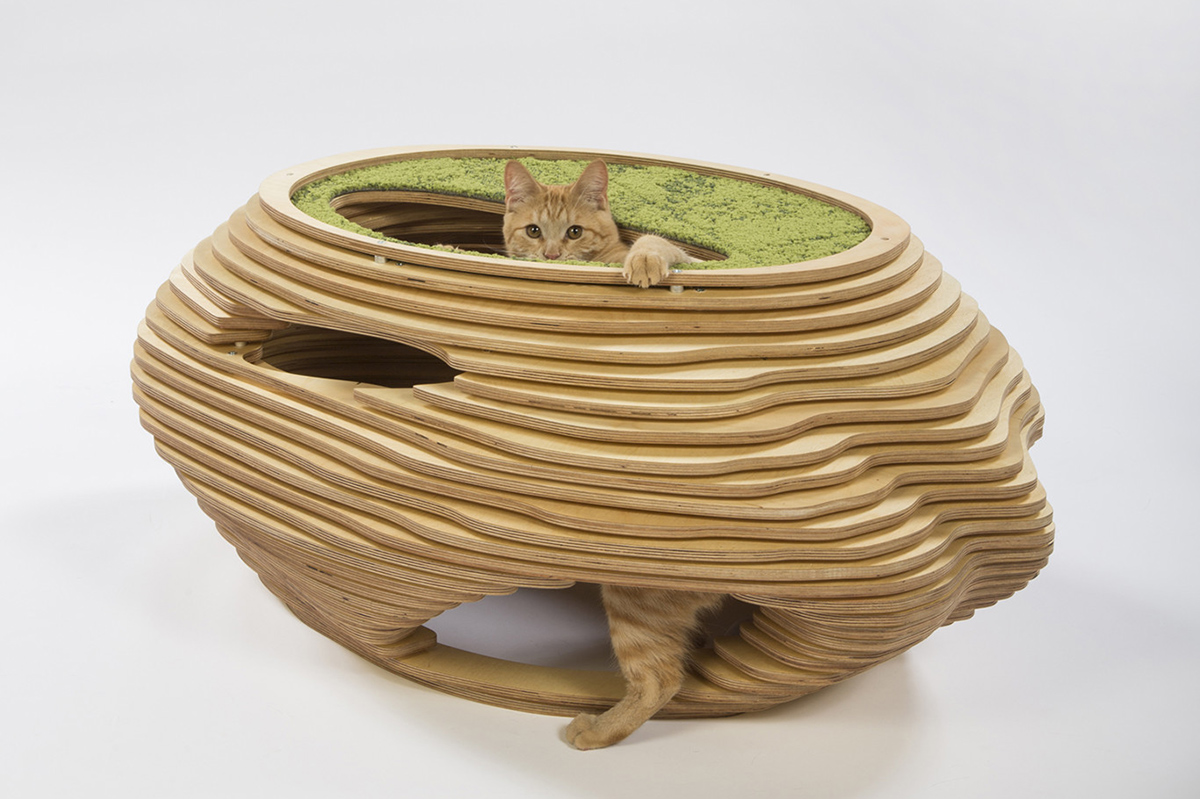 Abramson-Teiger-Architects-Cat-in-the-Fish-Bowl