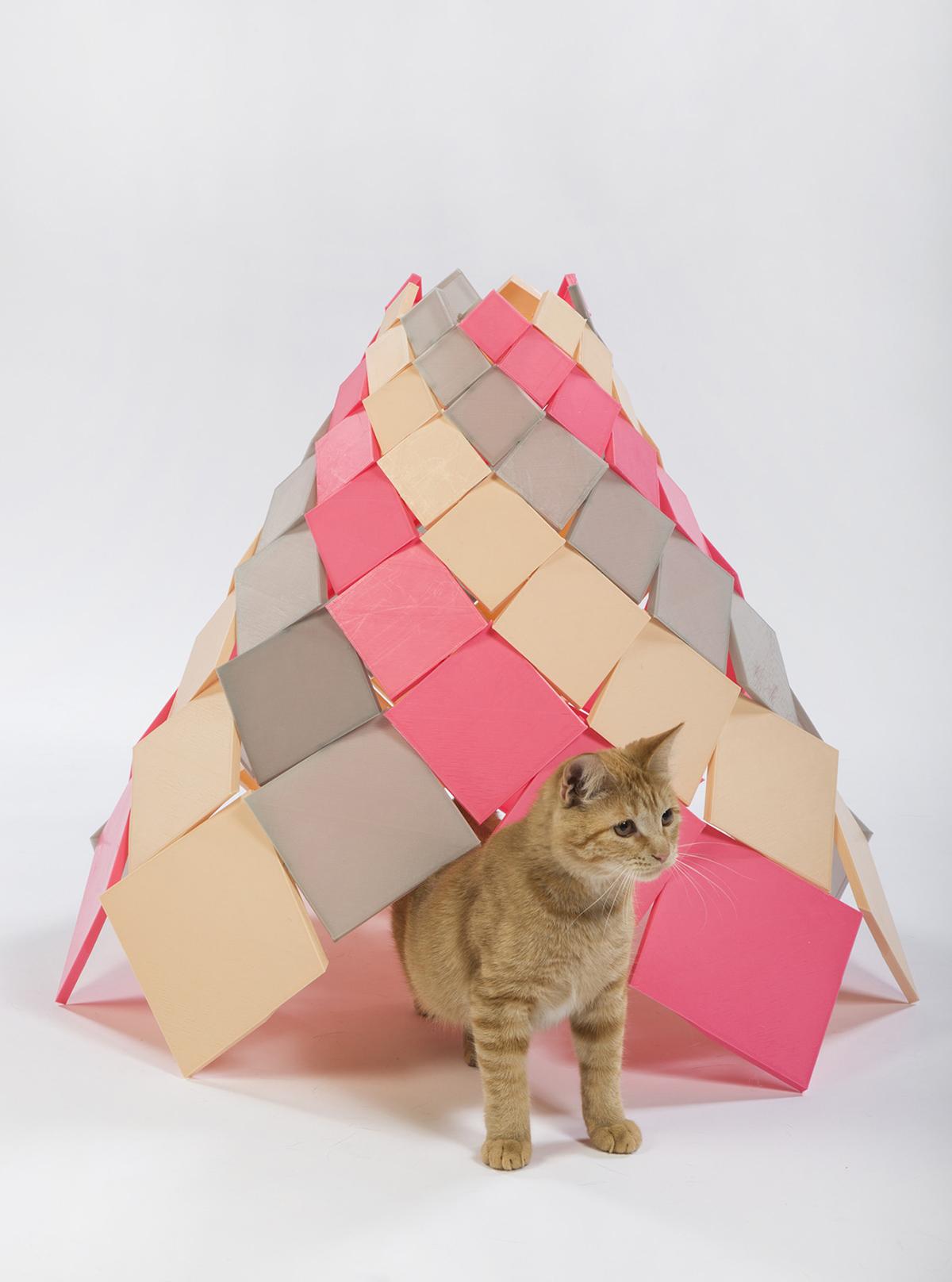DSH-architecture-Spiral-Kitty