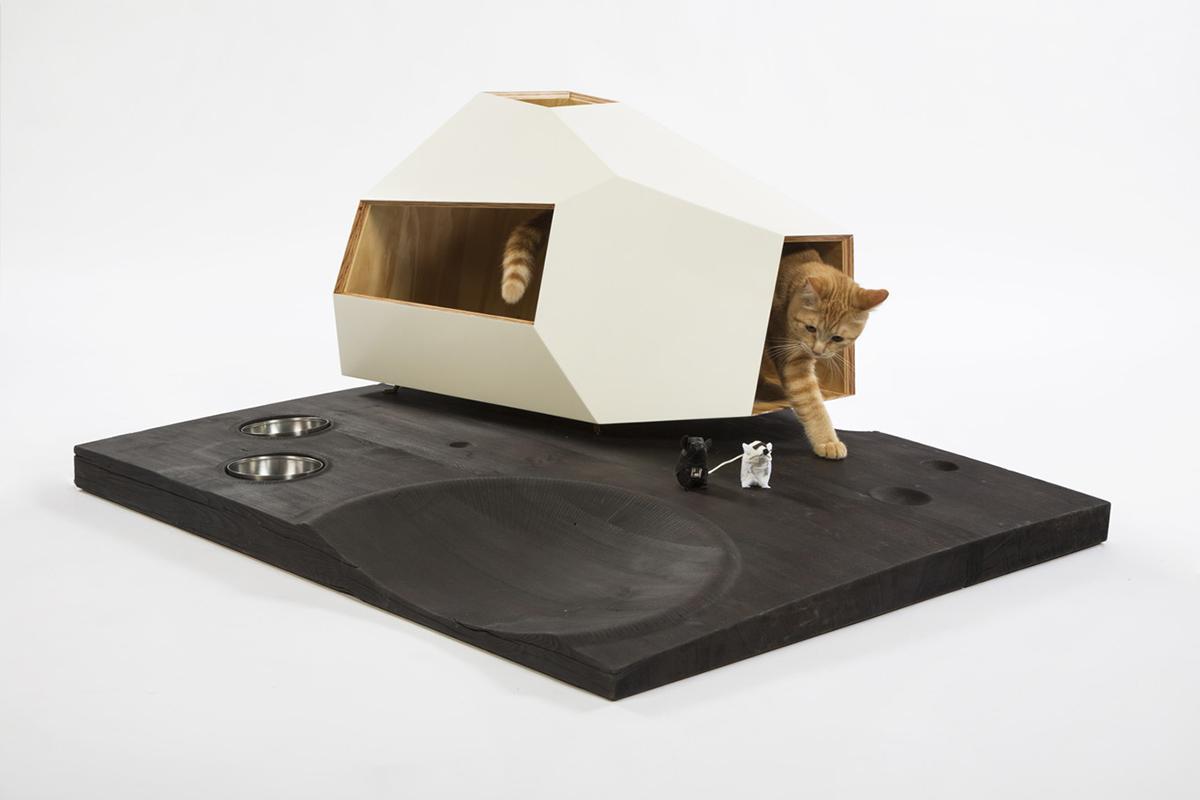 Knowhow-Shop-Lunar-Cat-Lander