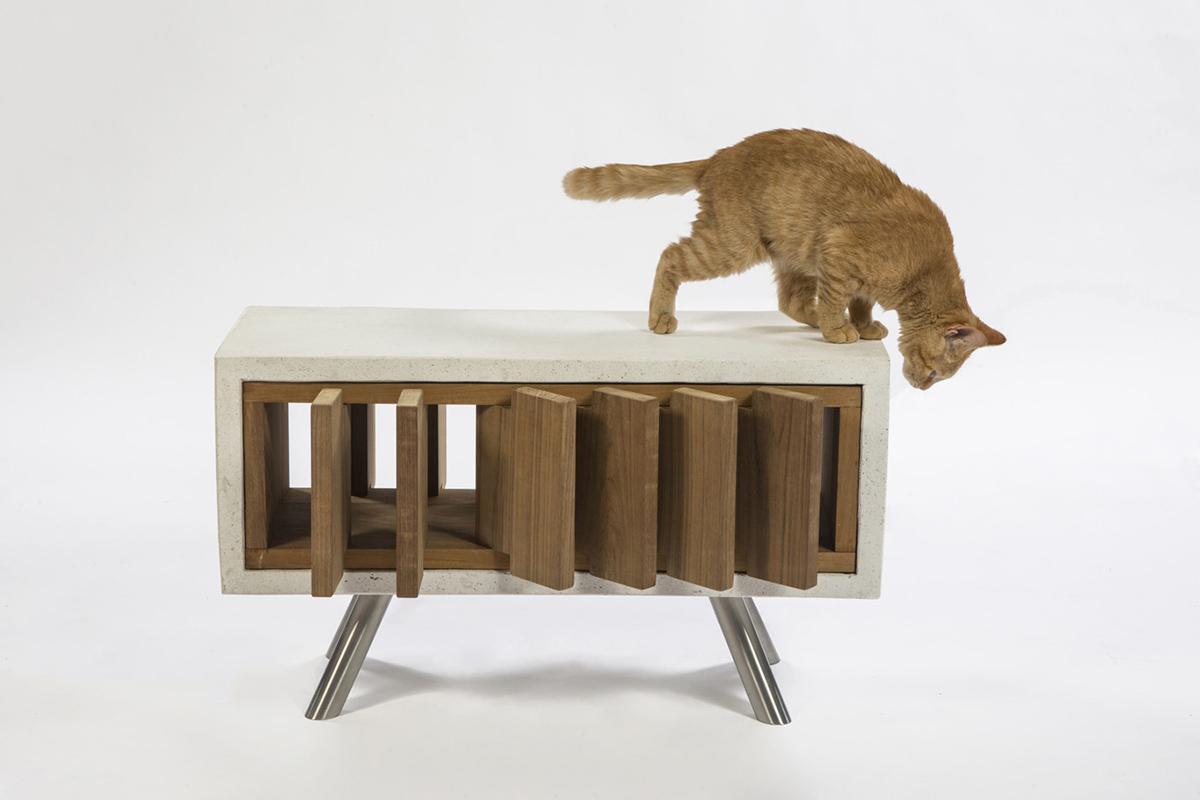 Standard-Architecture-Design-California-Catcube