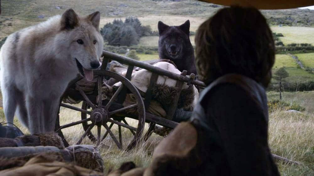 Game of Thrones - Summer y Shaggydog