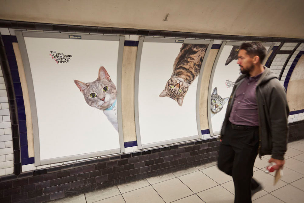 gatos metro londres